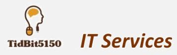 TidBit5150 Servers Status
