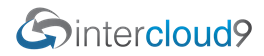 IC9 Networks Status