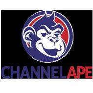 ChannelApe Platform Status
