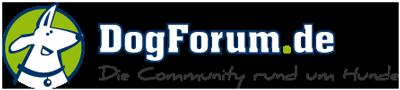 DogForum Status