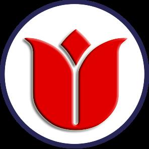 Istanbul Virtual Status Status